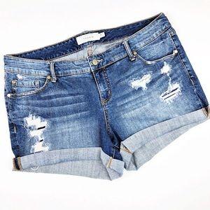 Torrid Distressed High Rise Denim Shorts